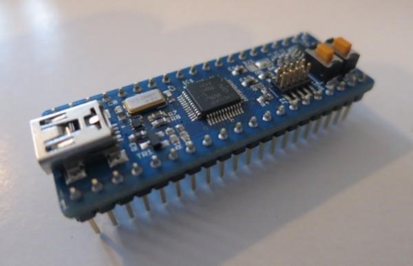 Dip-Cortex