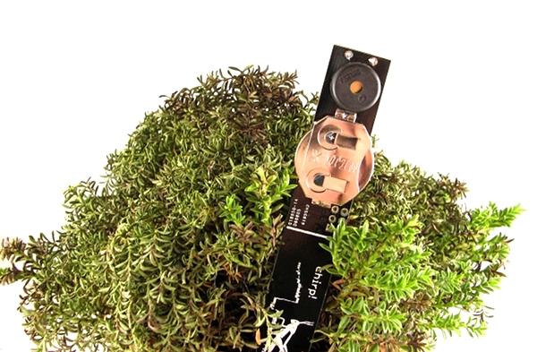 2012.11.27-plant-watering-alarm