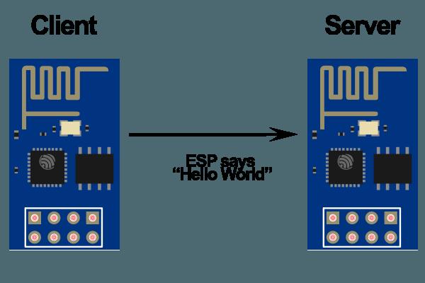 esp-client-vs-server