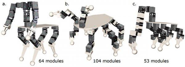 robo-design2_853x234-min